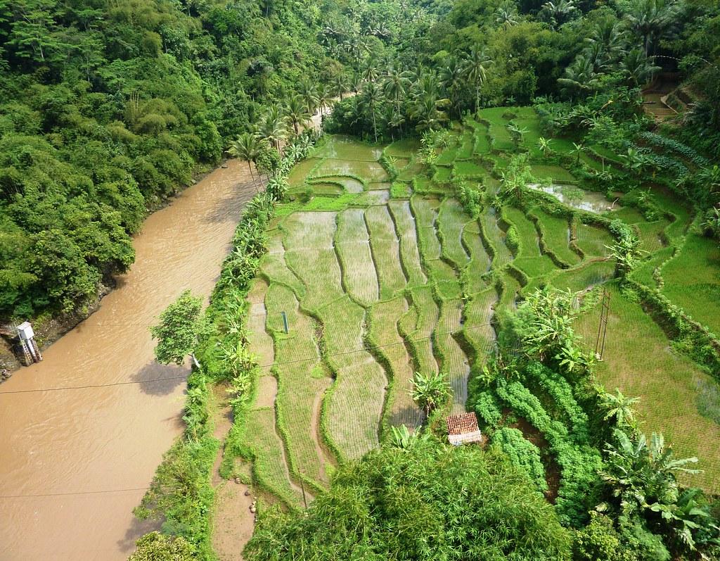 Java-Bandung-Yogyakarta (24)