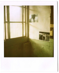 () Tags: film 2010  779  polaroidsonaronestepsx70  floatingexhibition 46