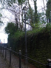 Brunswick Hill