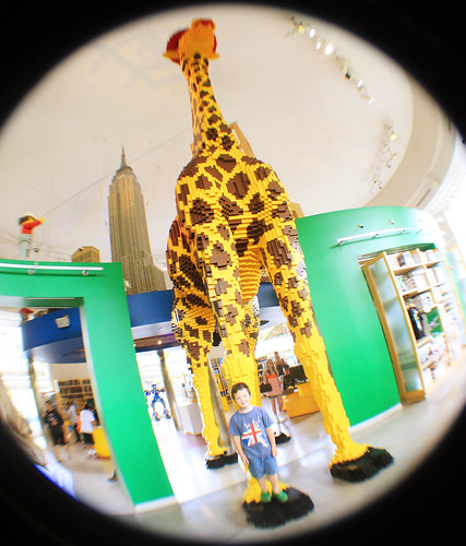 giraffe9593