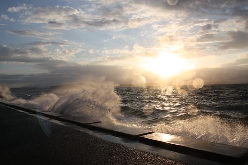 Alki Wave Action