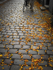 the magic of leaves (city of delusion) Tags: autumn fall leaves bike bicycle denmark scandinavia passerby odense brics