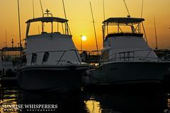 Sunrise Whisperers (Rayan M.) Tags: sunset sea water marina docks sunrise boats yachts moment jeddah saudiarabia            rayanmphotography sunrisewhisperers