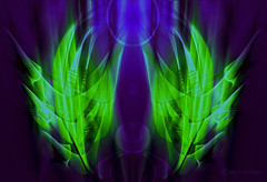 Pagan energy (CaBAsk! on and off. Thank U for the visit ♥) Tags: abstract art graphics bomomo photoshop digital manipulation fantasy expression imagination norway energy bright black green blue purple