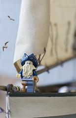 Pirate (dorukgoreli) Tags: lego afol toyphotography macrophotograpy macro macrolens minifigures nikon pirate sailing ocean