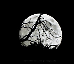 moon today (artemioskaravas) Tags: athens artemiosphotos attica shadow town exposure earth greece trees stars sky urban fullmoon night moon photography αthens silhouette beautiful