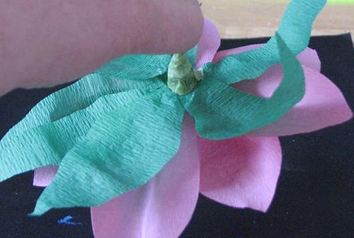 #12 - Crepe Paper Poinsettia 020