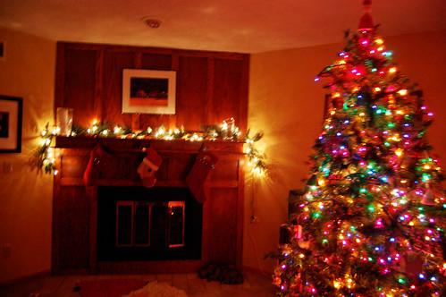 O Christmas Tree 01