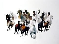 Horses from nowhere :) (raphic :)) Tags: portrait horse art nature paintings poland polska portret konie bieszczady przyroda ko malarstwo sztuka raphic
