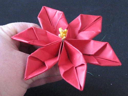 paper poinsettia Super pretty 3d paper flowers poinsettia - a gorgeous christmas decoration love how you need just paper to make these beautiful 3d giant poinsettia flowers.