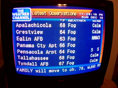 Fog. [Day 213/365]