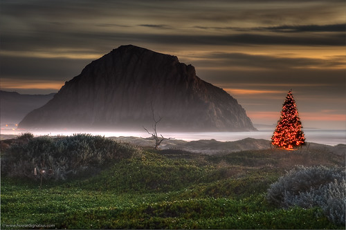Merry Christmas Morro Bay!