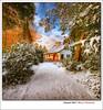 Dreaming of a white Christmas (Iván Maigua) Tags: christmas white snow nikon nieve thenetherlands iván nikond200 ivánmaigua —obramaestra—