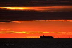 Container Ship Sagunto Dawn by S@ilor