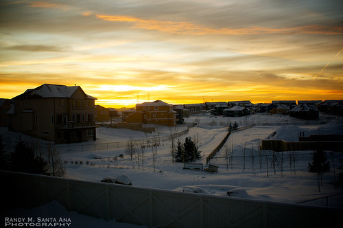 Sunset At The Winter Backyard