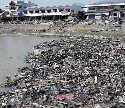 tsunami big pic