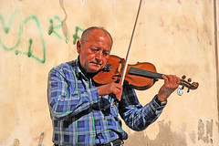 "Playing the Violin • <a style=""font-size:0.8em;"" href=""http://www.flickr.com/photos/45090765@N05/4258730263/"" target=""_blank"">View on Flickr</a>"