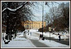 Oslo Palace (Stuart's Gallery) Tags: oslo norway norge nikon palace karljohan d60 stuarttaylor visitoslo 1001nightsmagiccity