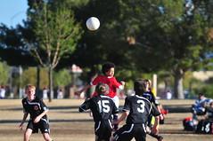 2010 Stallions-182 (caldwell.scott) Tags: soccer scottsdale stallions