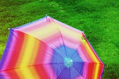 Rainbow Colour's.. (- M7D . S h R a T y) Tags: nature colors grass garden rainbow spectrum wordsbyme allrightsreserved