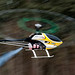 RC Flying - Assorted - Helicopters-27