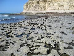 On the rocks (Adriano_of_Adelaide) Tags: ocean sea cliff beach seaside sandstone rocks australia cliffs shore southaustralia portwilunga