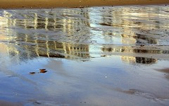 Cottages 10.01.24_47 (rowland-w) Tags: reflection beach water canon massachusetts northshore plumisland smrgsbord 70200f4lis