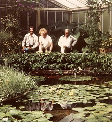 Reflections at Kew - 1978 (gareth1953 Cataract Creating Chaos) Tags: kewgardens reflection me hair ginger long waterlilies lilypads hothouse lilypond ampex paulberliner
