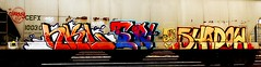 hkl (?) - Tn - Shadow (mightyquinninwky) Tags: railroad shadow face graffiti tn character tag graf railway tags tagged railcar graff graphiti freight trainart charney rollingstock paintedtrain hkl cefx spraypaintart nkl movingart taggedtrain railroadart paintedrailcar taggedrailcar