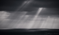 Light Rays, Montaa de Oro in black and white (D.Michelson) Tags: ocean california park light clouds de los state sony rays montaa a100 oro osos