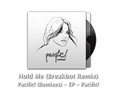 breakbot remix