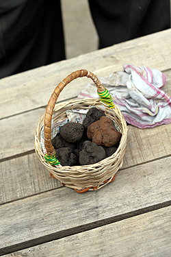truffle basket at market
