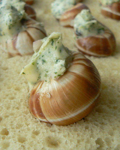 Stuffed snail