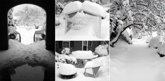 03 Snowpocalypse 2.0