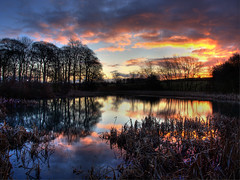 Sunrise At Goosehill Pond (Osgoldcross Photography) Tags: morning trees sky lake reflection water clouds photoshop sunrise reflections reeds early still pond raw earlymorning olympus explore wakefield frontpage stillness hdr westyorkshire cs4 3xp photomatix tonemapped explored rawconversion handheldhdr goosehill olympuse420 warmfield kirkthorpe