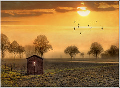Behind the window (Jean-Michel Priaux) Tags: autumn sunset orange sun sunlight house france tree art nature field fog illustration photoshop automne garden painting gold cabin nikon dream jardin peinture dreaming hut alsace paysage maison hdr brume cabane anotherworld savage sauvage fret mattepainting ried d90 maisonnette priaux ebersheim