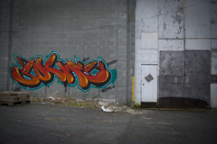 Red (Scotty Cash) Tags: graffiti 2010 nwk sueme ninelives