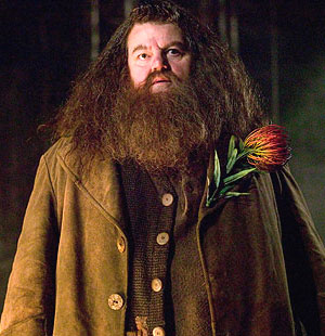 hagrid-romantic-giant