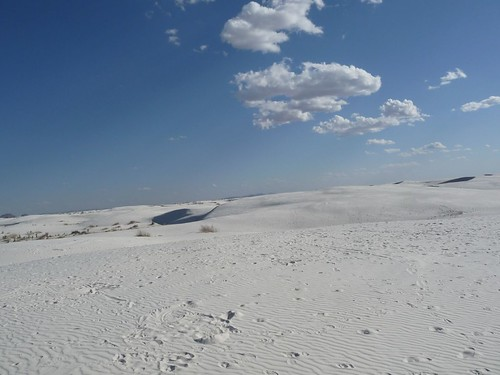 white sand.