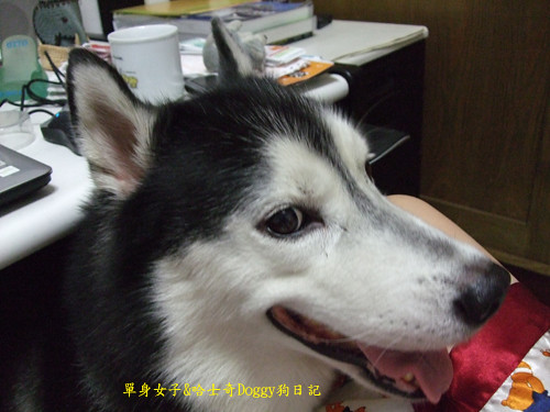 2010-01-10-093