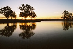 Harrison Duck Pond (Sam Ilić) Tags: sunset sun canonav1 pond harrison canberra reflectoin canonfd28mmf28 canberrasunset kodakultramax400