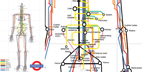 Human Body as a Tube Map by Sam Loman - click to see full size via Vizworld.com