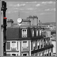 Geraniums over Paris (LeWaggis) Tags: roof paris square balkon montmartre square