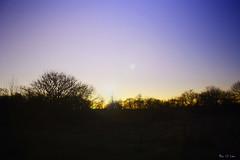 Sunset (Bou Li Lau Photography) Tags: nature day sunsetting