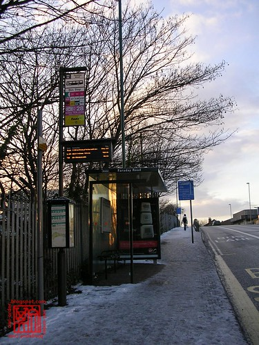 Icy Bus Stop