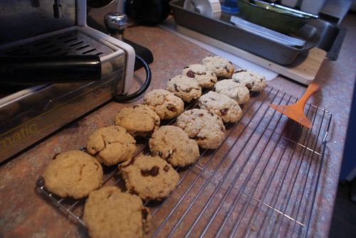 Oatmeal Raisin Cookies-2