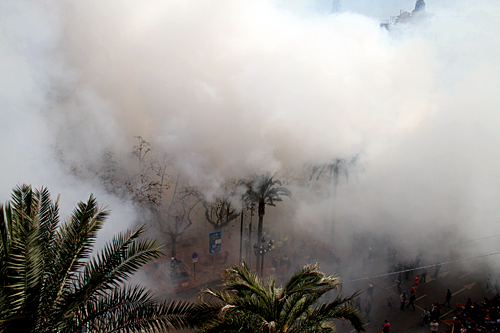 smoke-over-palms