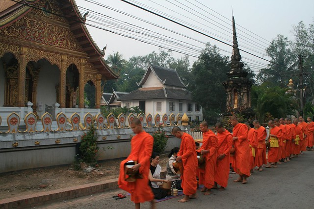Monks receiving morning alms, Luang Prabang, Laos