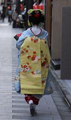Kyoto (japanjuezba) Tags: japan kyoto maiko geiko geisha nippon kimono obi gion nihon japanjuzba juzba