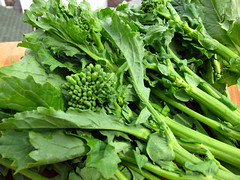broccorabe01